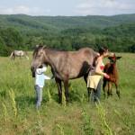девчата с нашими лошадьми