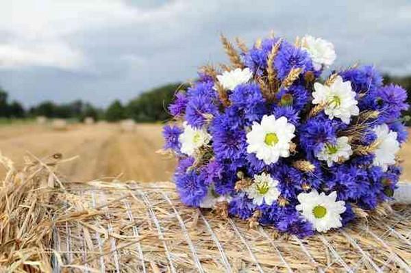 яркий-свадебный-букет-из-полевых-цветов